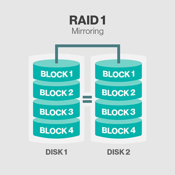 raid1